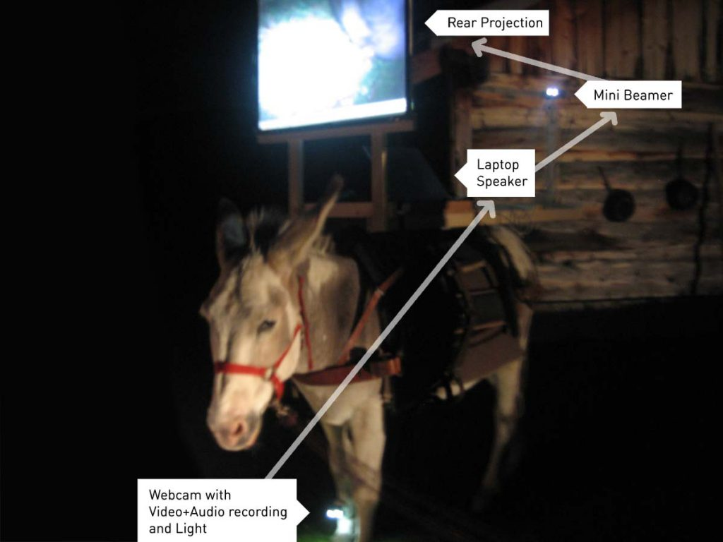 Media Donkeys, Mobile Formats - donkey transformed into a mobile-media station